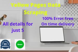 Portfolio for I will do yellow pages email scraping
