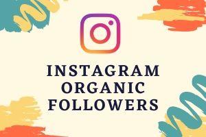 Portfolio for Social Media Manager & Expert