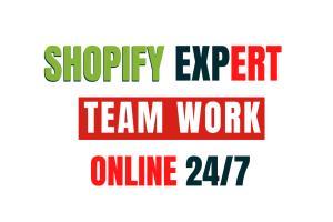 Portfolio for Shopify Website Design Store Expert !