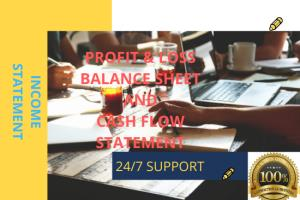 Portfolio for Profit and Loss, Balance Sheet