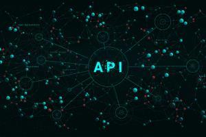 Portfolio for API development