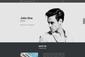 Portfolio for Professional Web Developer