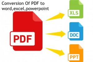 Portfolio for PDF Conversion | Convert a PDF