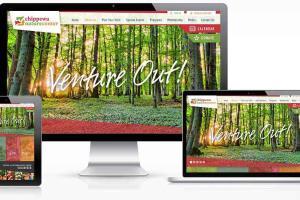 Portfolio for Website & Web Development Company