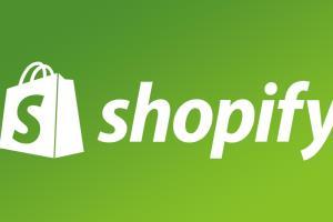 Portfolio for I will create shopify dropshipping store