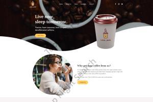 Portfolio for I will develop an SEO ready website