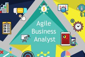 Portfolio for Senior Business Analyst