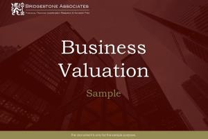 Portfolio for Business Valuation Services