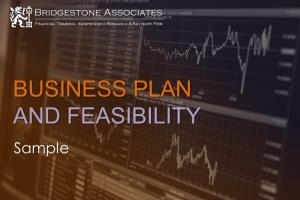 Portfolio for Business Plans and Feasibility