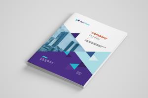 Portfolio for Design Your Company and Annual report