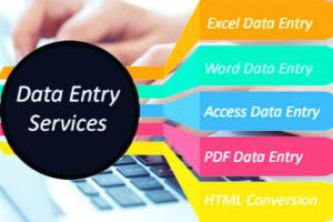 Portfolio for Data entry and Typing