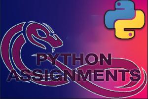 Portfolio for Python Programming Assignments