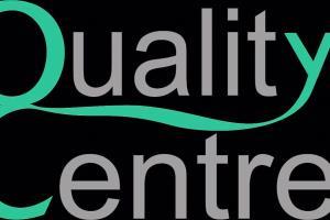 Portfolio for Seasoned quality systems writer