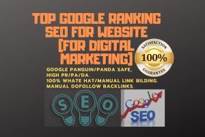 Portfolio for Google Top Ranking SEO For Website