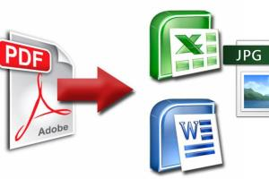 Portfolio for I will convert PDF to excel or word