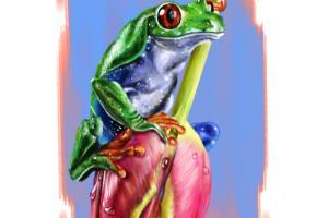 Portfolio for Animal scientific digital illustrations