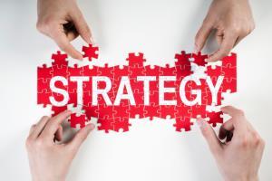 Portfolio for Strategic Consulting