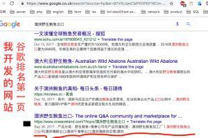 Portfolio for make your websites in the 1st of google
