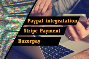 Portfolio for I will integrate razorpaypayment gateway