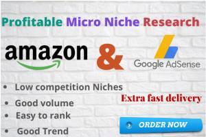 Portfolio for Profitable micro niche research
