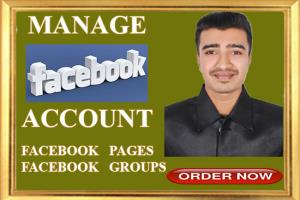 Portfolio for Manage your facebook account,pages and g
