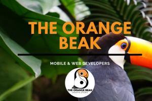 Portfolio for Senior Full Stack Developer & Designer