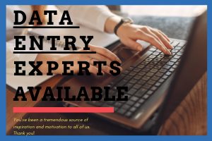 Portfolio for Data Entry Experts Available