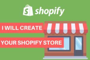 Portfolio for Branded Shopify Droppshipping store