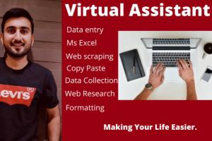 Portfolio for Virtual Assistant
