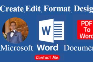 Portfolio for Microsoft word Expert