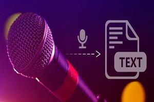 Portfolio for Vietnamese Transcriptionist