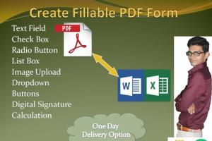 Portfolio for create a fillable PDF form within 24 hr
