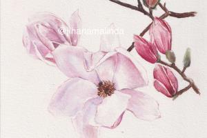Portfolio for Watercolor illustration