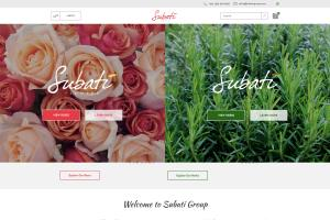 Portfolio for Expert Web Developer| Shopify|WordPress|