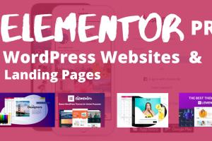 Portfolio for WordPres | Elementor/Astra | Woocommerce