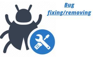 Portfolio for Bug fixing
