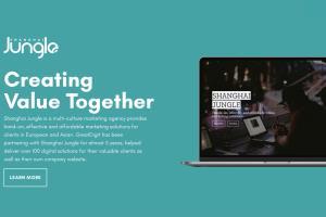 Portfolio for WordPress Website Development& Design
