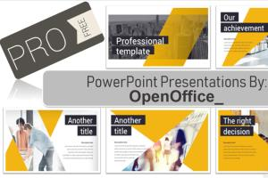 Portfolio for Quality Presentation Design in 24 hours