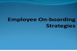 Portfolio for Human Resource, Organizational & Admin