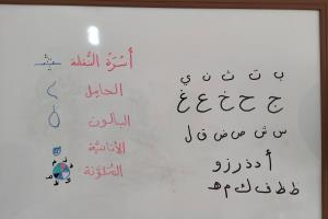 Portfolio for Arabic linguistic :tutor, reviewer, writ