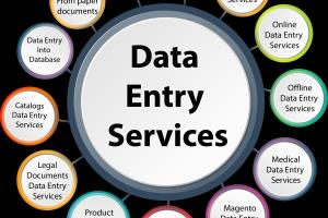 Data Entry Online and Offline work