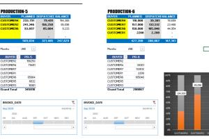 Portfolio for Microsoft Excel Charts and Pivot tables