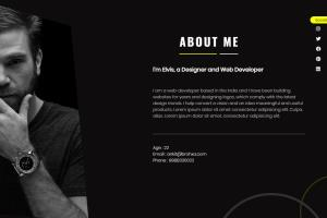 Portfolio for I Will Develop A Custom Website