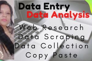 Portfolio for DATA ENTRY DATA ANALYSIS