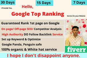 Portfolio for white hat manual google top rank service