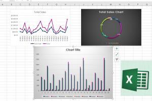 Portfolio for Data Entry and Data Visualization