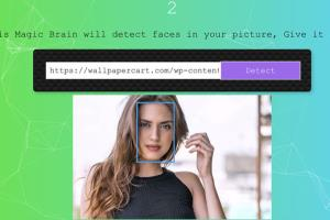 Portfolio for Web Development, UI/UX, Graphic Design