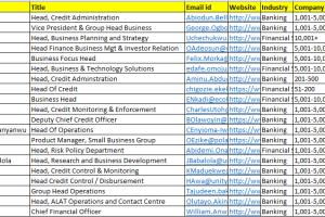 Portfolio for Expert in B2B lead Generation