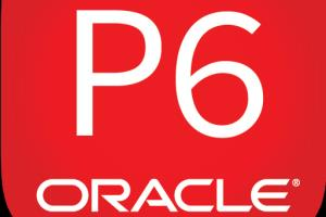 Portfolio for Manning Projects on Oracle Primavera P6