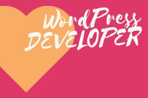 Portfolio for Create a WordPress Website in low cost.